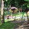 детска площадка - градската градина