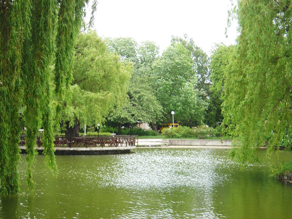 Езерцето в градинката в Разлог